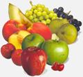 frutihorticola